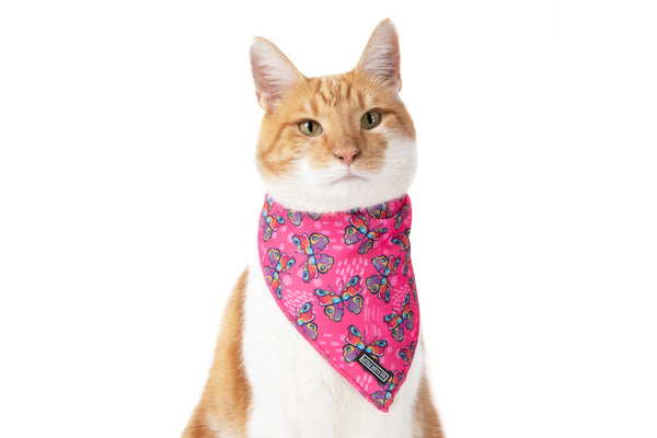 Cat Cooling Bandana Flutterly Fab