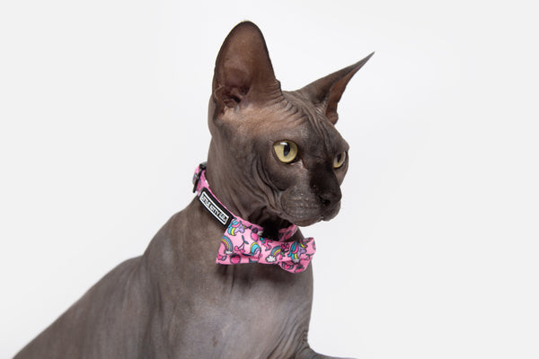 Cat Collar and Bow Tie Off Meow-gical Unicorns and Rainbows