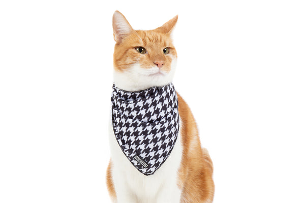Cat Cooling Bandana Catstooth