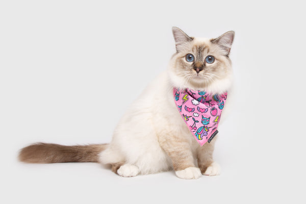 Cat Cooling Bandana Meow-gical Unicorns and Rainbows