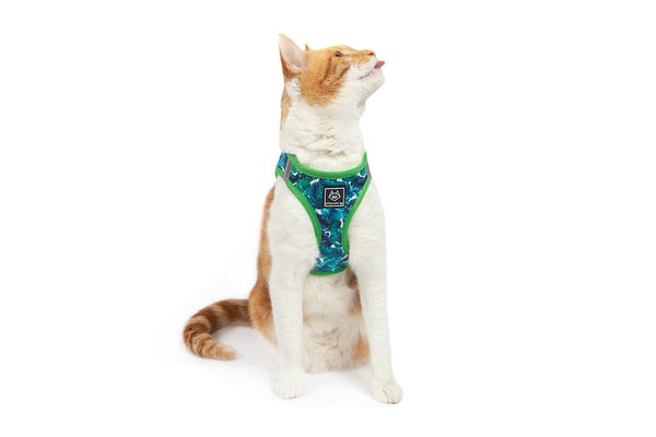 Cat Step In Harness Vacay Palms