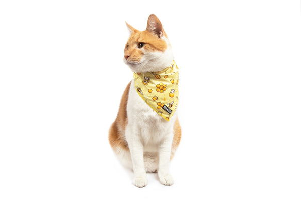 Cat Cooling Bandana Bee-Hiving