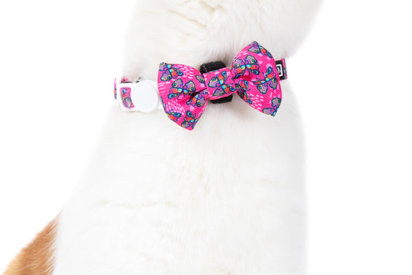 Cat Collar and Bow Tie Flutterly Fab