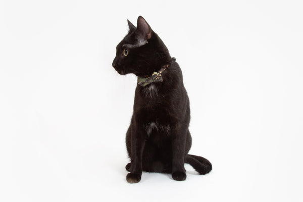Little Kitty Co. Cat Collar & Bow Tie Catouflage Camoflage