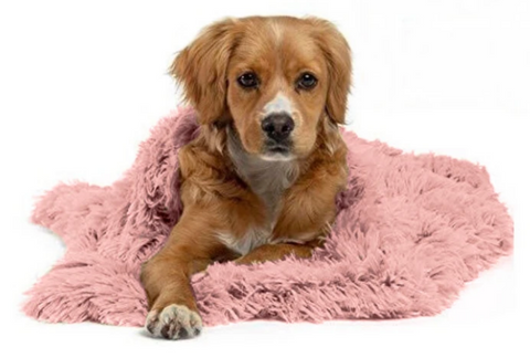 Calming Donut Cuddler Fur Blanket - Dog Shop Deals