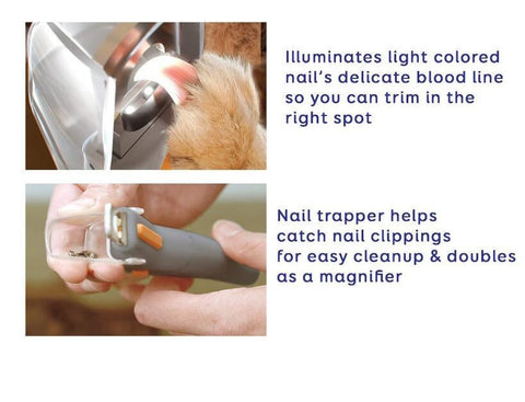 Professional Pet Clipper with LED Lighting - Dog Shop Deals