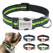 REFLECTIVE | Dog Collar with Laser Engraved Personalised Buckle - Dog Shop Deals