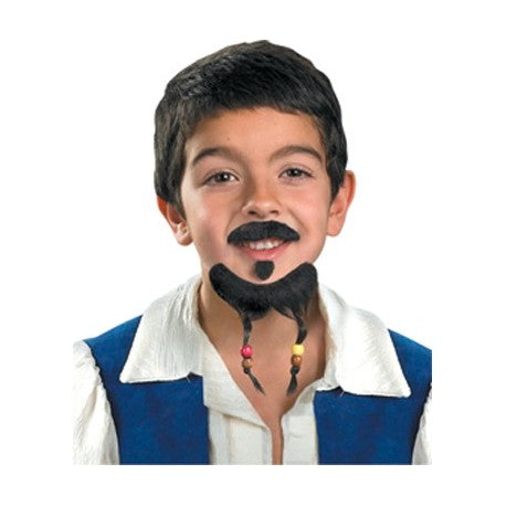 Goatee and Mustache Costume