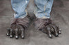 Black Killer Wolf Feet