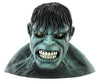 Hulk Adult Full Vinyl Mask
