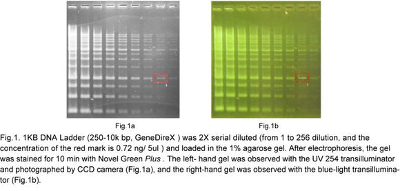 Novel Green Plus (20000X) (DNA Staining Reagent)