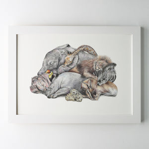Safari Sleepers Print