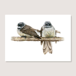 Cheeky Fantails Print