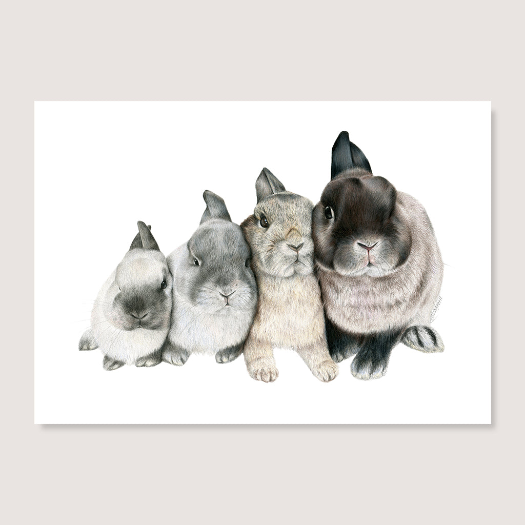 SALE print Four Bunnies