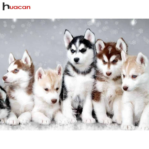HUACAN New Arrivals 5D Diamond Painting Husky Dog Full Square Diamond Mosaic Animal Diamond Embroidery Cross Stitch Decoration