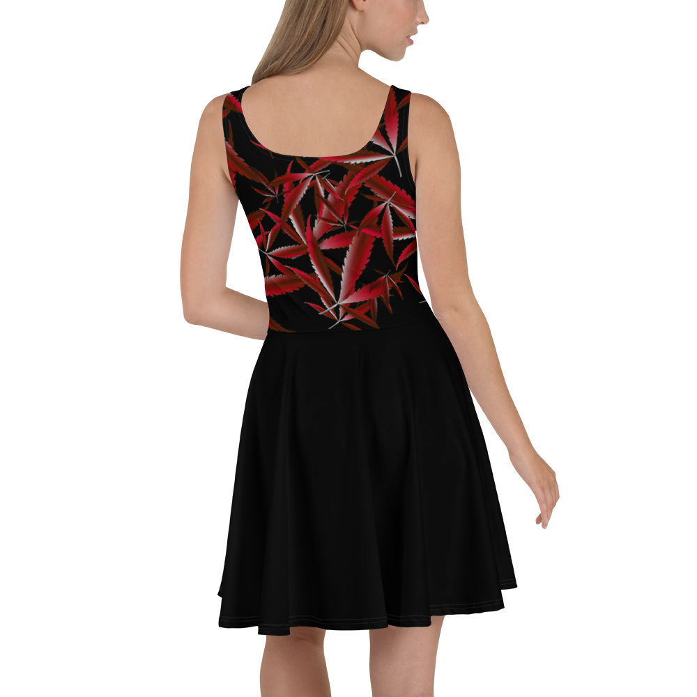 Black & Red Skater Dress
