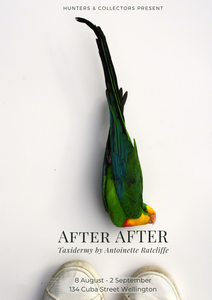 AFTER AFTER by Antoinette Ratcliffe