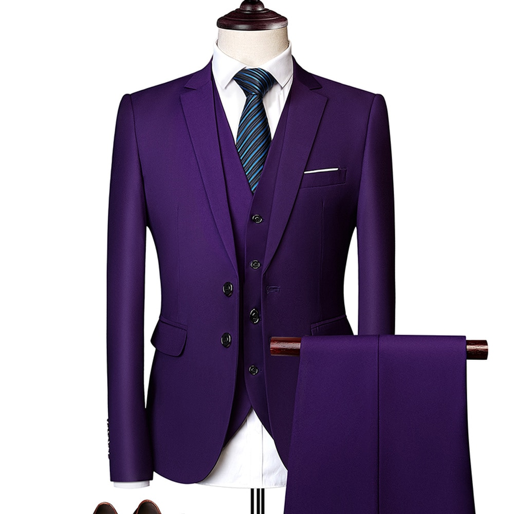 Colton Casual Suit In Purple