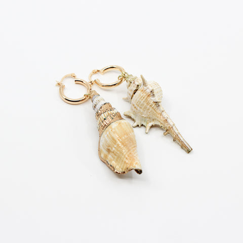Low Tide Shell Earrings