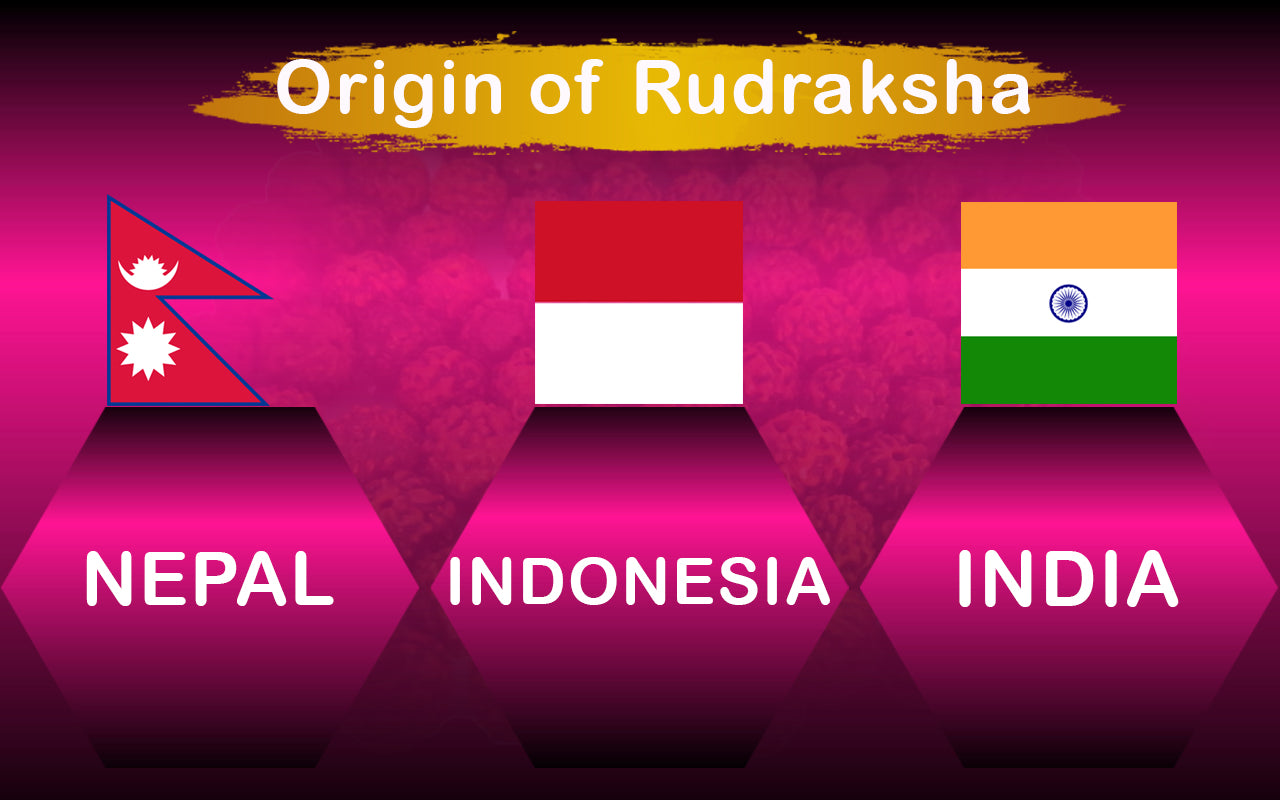 Origin of Rudraksha