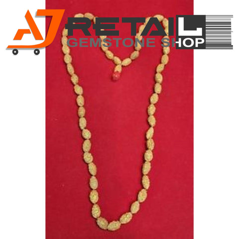 Indonesian Mala 2 Mukhi Beads 108 mm7-9 Certified Laboratory tested - Aj Retail (19) - Aj Retail - 1 Mukhi Rudraksha