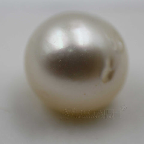 6.92cts Salt Water Pearl 100% Natural with certificate report generated by IGL Laboratory - 1 Mukhi Rudraksha
