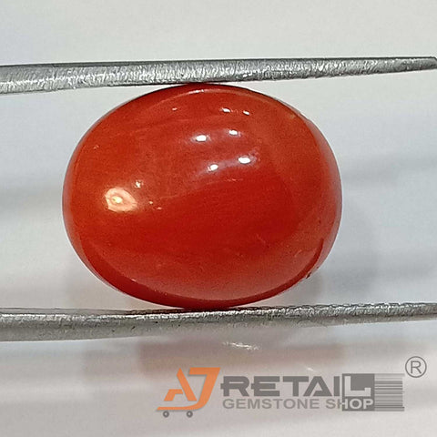 15.90ct Natural Red Coral Certified by IGL
