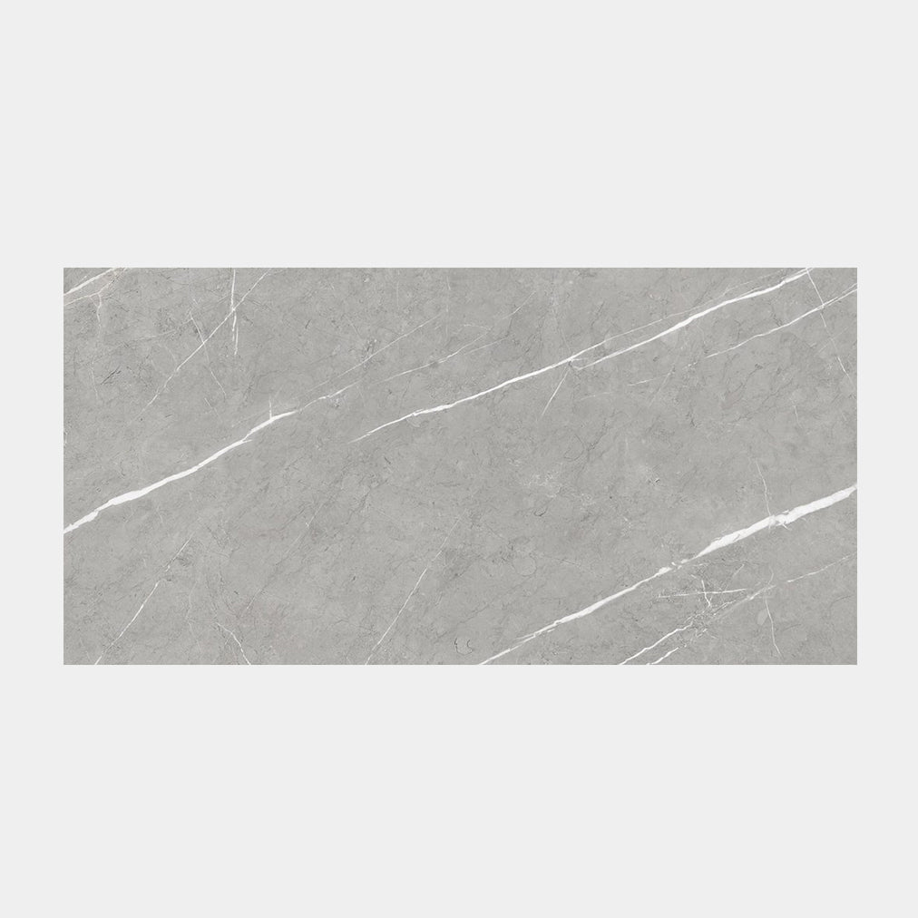 Pietra Silver Polished Tile