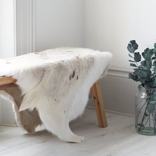 rarebreed white spotted reindeer hide / throw