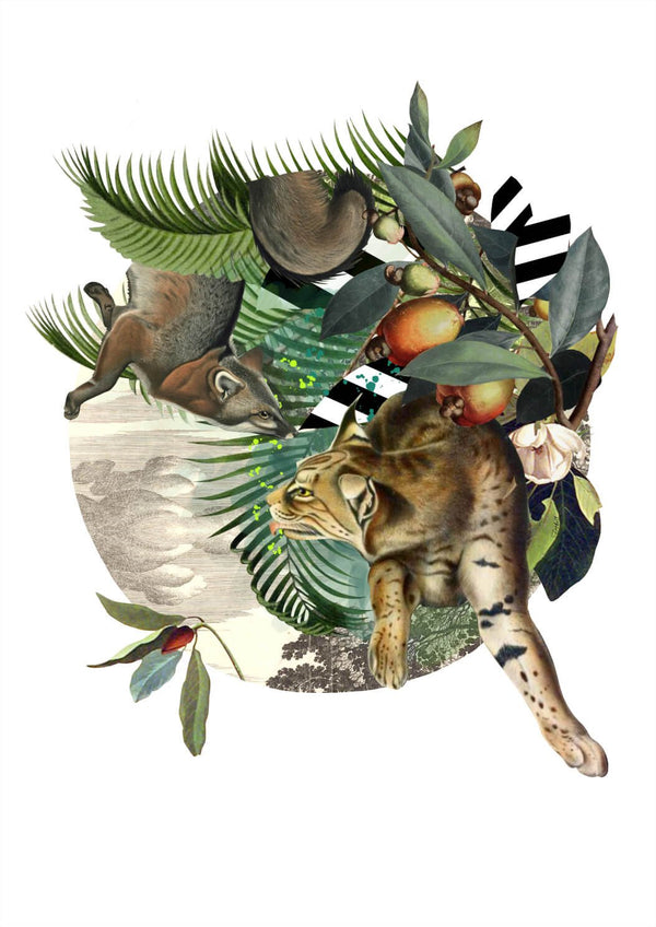 Fox & Lynxs' Tropical Escape Print - Jackdaw Living