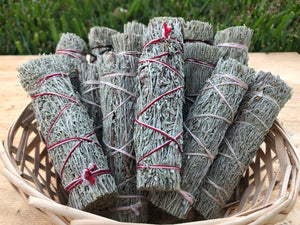 Shasta Sage bundle