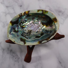 "Large Rainbow Abalone Shell 5""-6"" with wooden tripod stand"
