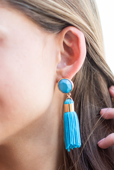 Turn Some Heads Earrings, Turquoise