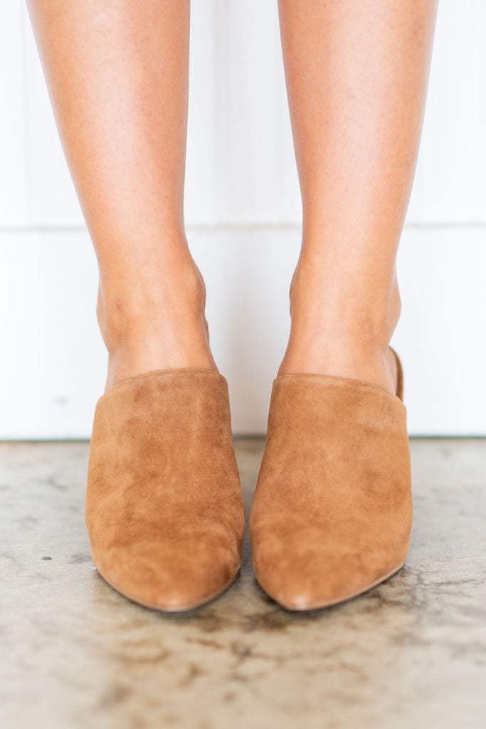 0622645d1fc Steve Madden Faux Suede Heeled Mules