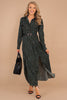 maxi dress, long sleeves, collared, partial button down neckline, leopard print