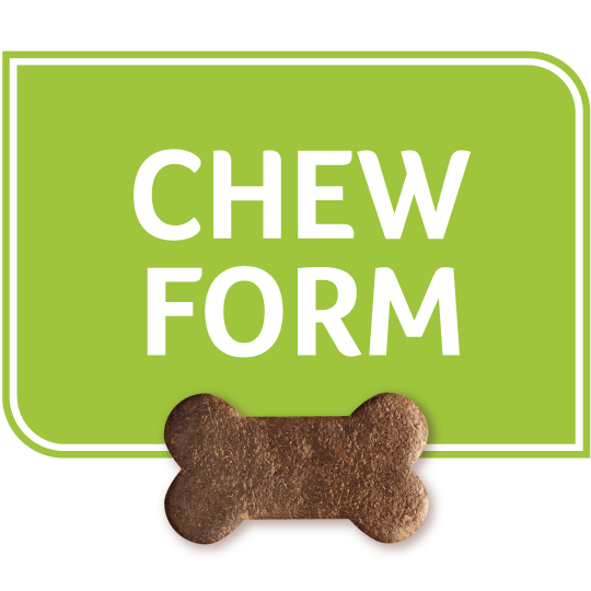 Chew form
