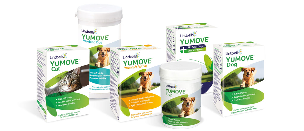 YuMOVE product range