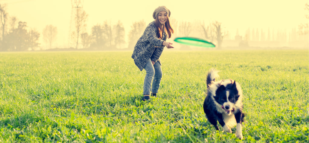 Women throwing frisbee for dog