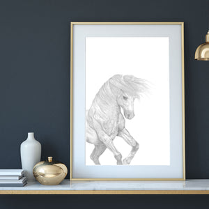 'Harriet', the graceful female horse from the ' a horse's tale' collection