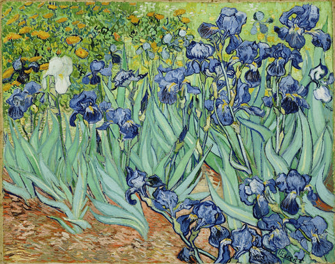 Irises by Vincent Van Gogh - Hand Painted Oil Painting