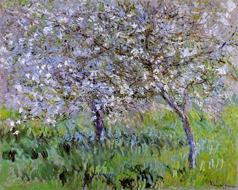 Apple Trees in Bloom at Giverny - Hand Painted Oil Painting