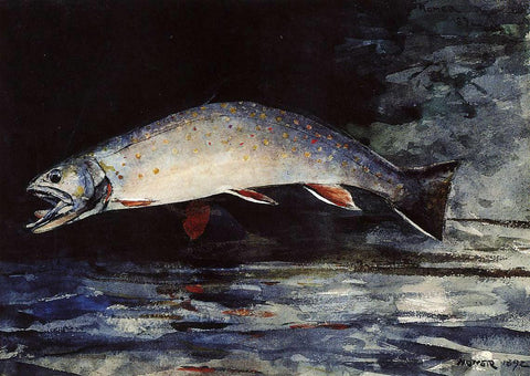 Winslow Homer A Brook Trout - Hand Painted Oil Painting