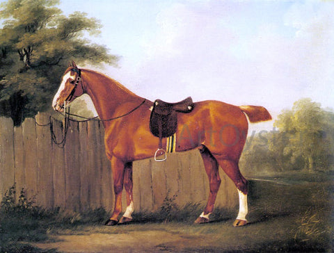 John Nost Sartorius A Chestnut Hunter Tethered to a Fence - Hand Painted Oil Painting