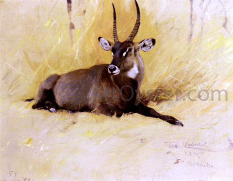 Wilhelm Kuhnert A Common Waterbuck - Hand Painted Oil Painting