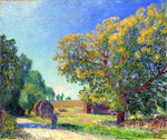 Alfred Sisley A Forest Clearing - Hand Painted Oil Painting