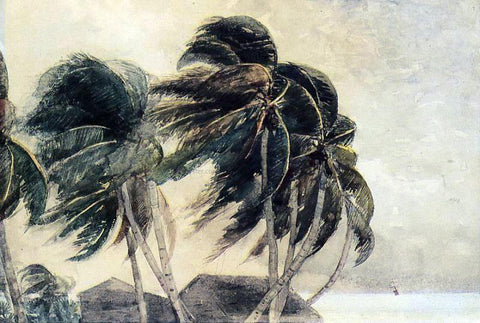 Winslow Homer A Norther - Key West - Hand Painted Oil Painting