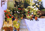 Joaquin Sorolla Y Bastida A Rooftop with Flowers - Hand Painted Oil Painting