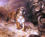 William Huggins A Tiger and a Serpent - Hand Painted Oil Painting