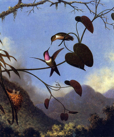 Martin Johnson Heade Amethyst Woodstar - Hand Painted Oil Painting
