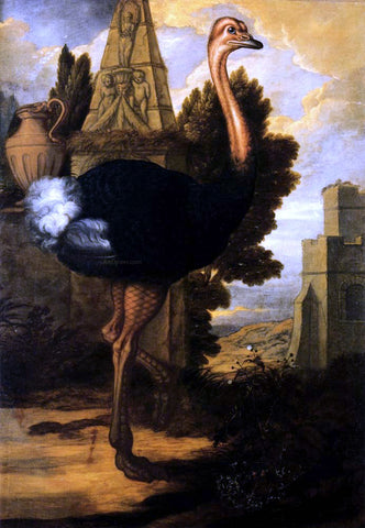 Francis Barlow An Ostrich - Hand Painted Oil Painting